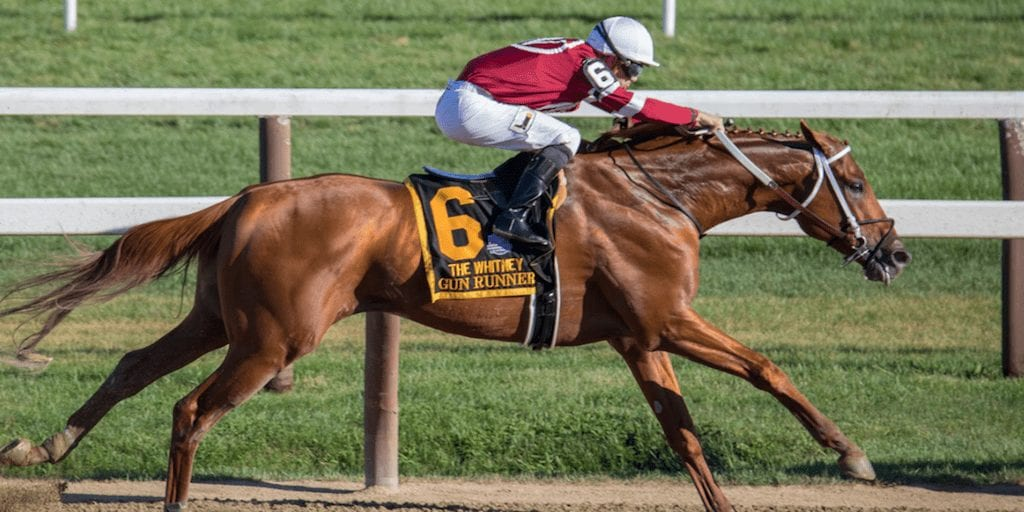 A Racetrack Has Been Suspended Indefinitely After 21 Horses Died Within 10 Weeks
