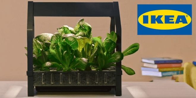 IKEA's indoor garden let's you grow vegetables all year round
