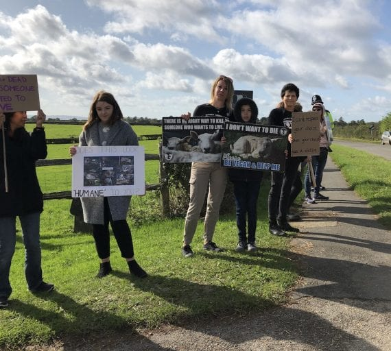 Relentless vegan activists have protested outside a slaughterhouse every month for two years
