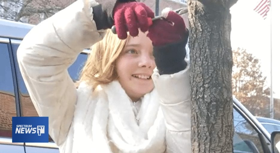 12-year-old plucks staples from trees to help them live longer