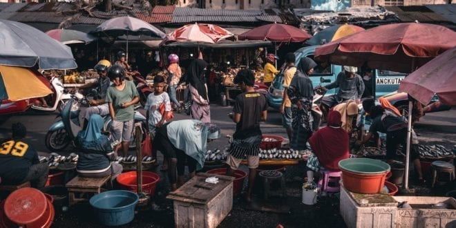 Indonesian market ignores coronavirus warning and continues to sell bats