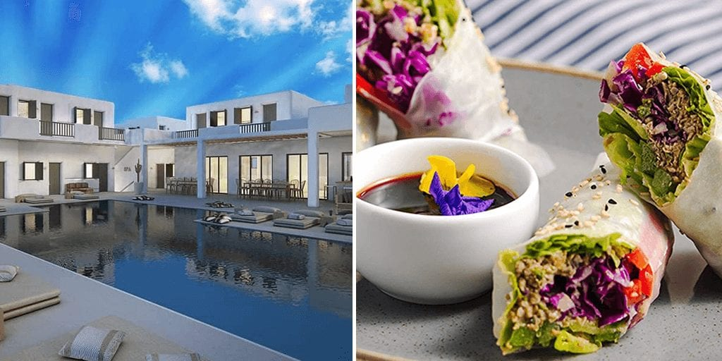 Greece to open its first fully vegan hotel in Mykonos this summer