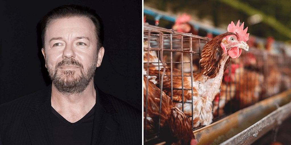 Ricky Gervais calls on UK government to ban 'cruel' and 'inhumane' factory farming