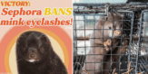 Sephora bans mink fur eyelashes