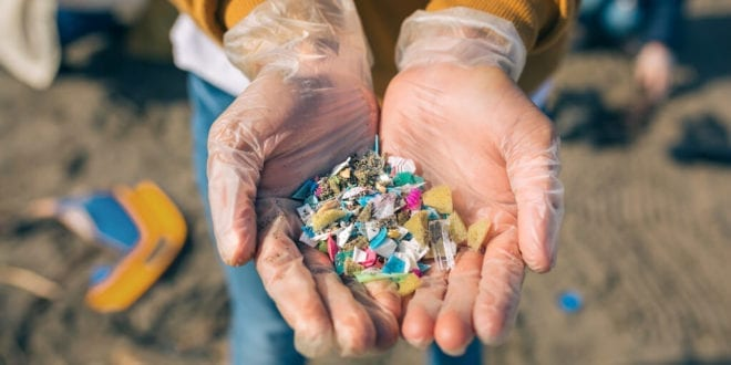New study shows toxic microplastic deposition in all major human organs