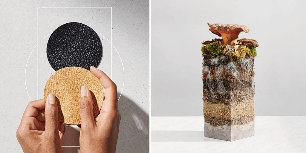 Adidas, Stella McCartney material solutions company for mushroom leather products