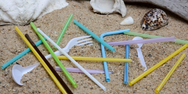 Australian state becomes first to ban plastic drinking straws and stirrers in the country