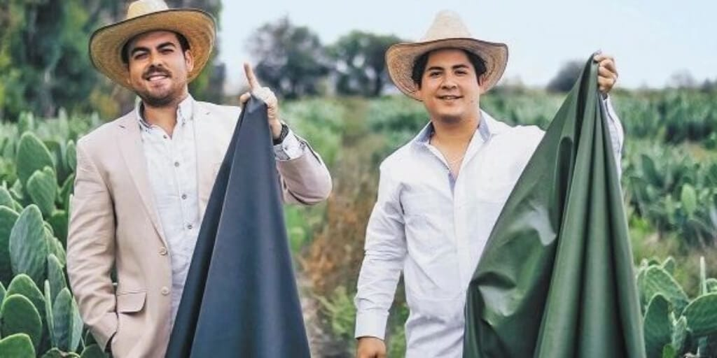 Vegan cactus leather company wins popular award after teaming up with H&M