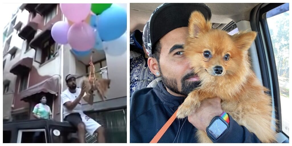 YouTuber makes pet dog fly using helium balloons, gets arrested for animal cruelty.